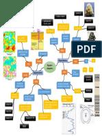 Mapa mental1