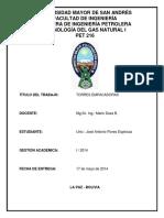 300728649-Planta-Paloma.docx