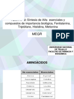 t3 - Fenilalanina,Tirosina,Histidina, Metionina