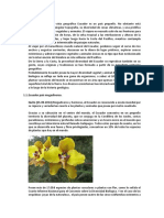 Biodiversidad Realidad Nacional 1
