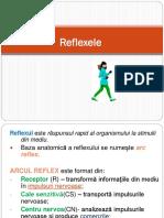 Reflexele