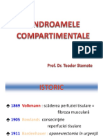 Sindromul compartimental.pptx