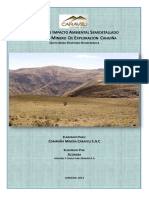 6. EIA-proyecto-exploracion-cahuina.pdf