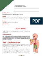 taller de nutricion sexto.pdf