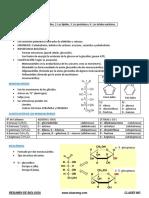 BIOLOGÍA Resumen Cap. 3. Glúcidos