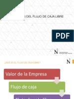 Flujo de Caja Libre (1)