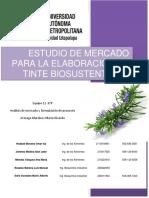ESTUDIO DE MERCADO PARA LA ELABORACIÓN DE TINTE BIOSUSTENTABLE