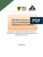 LINEAS DE BASE IXIAMAS.docx