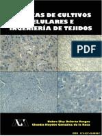238 - Dra. Nohra Elsy Beltrán Vargas, Dra. Claudia Haydée González de la Rosa.pdf