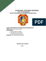Analisi de Mercado Potencial (2018)