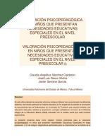 Valoración Psicopedagógica en Niños Que Presentan Necesidades Educativas Especiales en El Nivel Preescolar