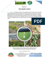 9 - Drip Irrigation