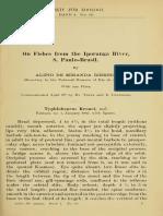 Miranda-Ribeiro 1908 - On Fishes From the Iporanga River
