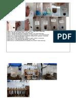 Biokimia Anabolit Protein