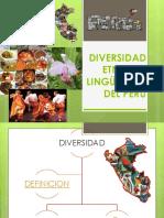 Diversidad Etnica y Linguistica...