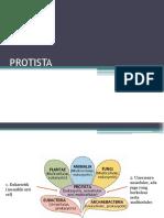 Presentasi Protista Fix