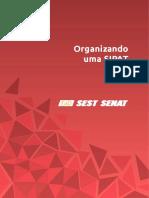 Organizando Uma SIPAT