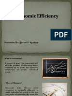 Economic-Efficiency-Final.pptx