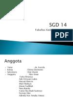 SGD 14.pptx