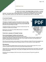 breast leaflet