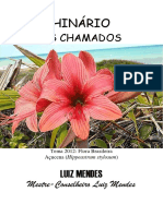 362480161-Luiz-Mendes-Os-Chamados.pdf