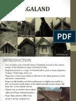 207106336-Hill-Architecture.pptx