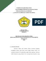 EBP FLAMB 3.doc