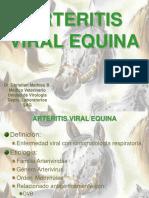 ARTERITIS VIRAL EQUINA.ppt