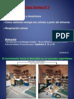 BIOQUIMICA_teorico3- Respiracion Celular