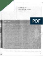 CADENA+DE+SUMINISTRO.pdf