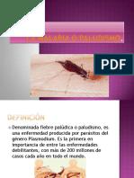 lamalariaopaludismo-100910233159-phpapp02