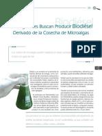 IPN microalgas