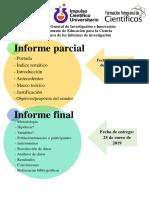 Lineamientos Informe de investigación.pdf