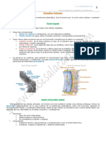 09-no-membranosos-2-bach.pdf