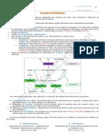 11-metabolismo-2-bach.pdf