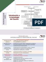 Curso_CR_Introducción_tecnología_caucho. (1).pdf