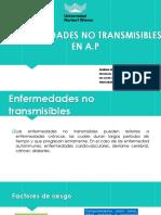 Enfermedades No Transmisibles en a.p