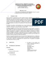 INFOR DE ANALS X INSTR 06.docx