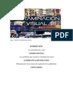 contamiancion visual- Claudia fierro.docx