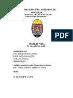 Informe Plan de Mercado Final GUIFITI GRUPO #3