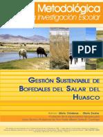 Guia_Metodologica_Bofedales.pdf