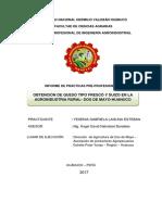 IPPP - Gabriela - 2017 - Ok (Reparado)