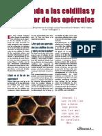 2005_Celdillas_panal_El_Colmenar.pdf