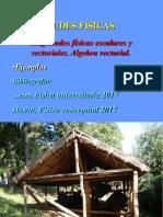 Magnitudes Fisicas.pdf