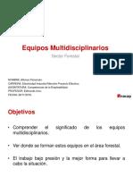Presentacion Equipos Multidisciplinarios Sector Forestal