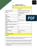 Perfil de Puestos Diseño Para Saravia