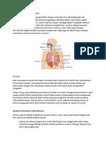 Pengertian Sistem Pernafasan