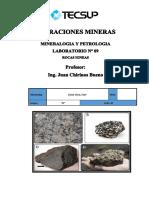 laboratorio 9 igneas.pdf