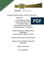 Proyecto Colaborativo –Marco Teórico y Metodológico.