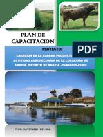 Plan de Capacitacion Anapia